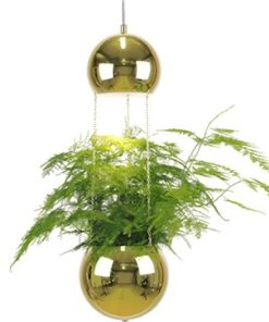 Globen Lighting Pendel Mini Planter Mässing-Inredning - Belysning - Taklampor & Pendlar